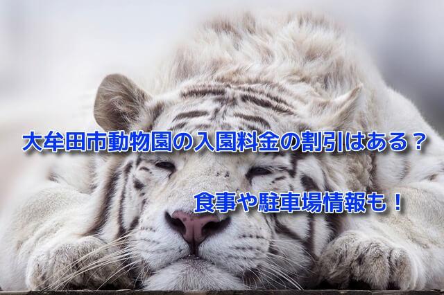 大牟田市動物園の入園料金の割引はある?食事や駐車場情報も!