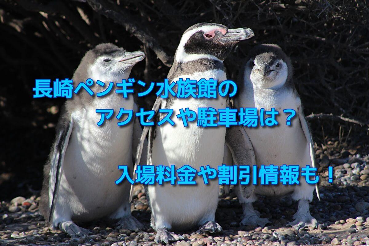 長崎ペンギン水族館のアクセスや駐車場は?入場料金や割引情報も!