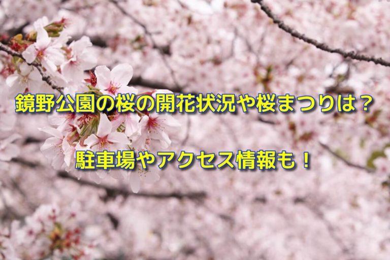 鏡野公園の桜の開花状況や桜まつり2020は?駐車場やアクセス情報も!