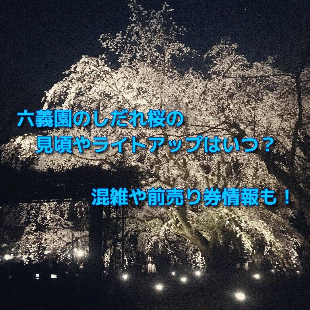 六義園のしだれ桜の見頃やライトアップはいつ?混雑や前売り券情報も!