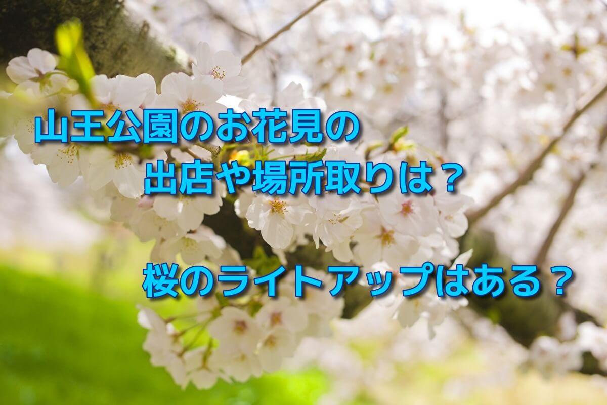 山王公園のお花見の出店や場所取りは?桜のライトアップはある?
