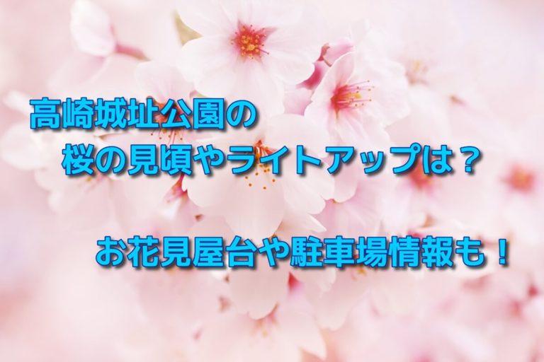 高崎城址公園の桜の見頃やライトアップは?お花見屋台や駐車場情報も!