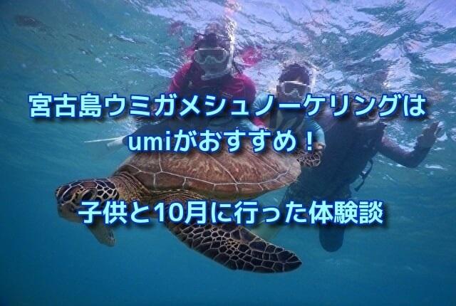 宮古島ウミガメシュノーケリングはumiがおすすめ!子供と10月に行った体験談