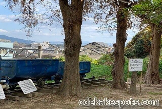 直方市石炭記念館 メタセコイア